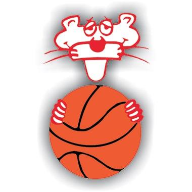 ASD Amatori Basket Savigliano logo precedente