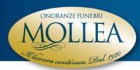 Mollea